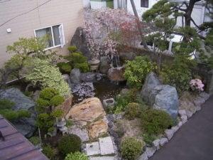 池回りに松、桜などの樹木を使い落ち着いたお庭に。